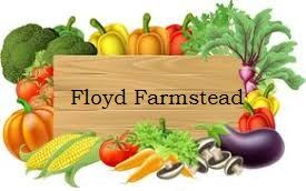 FloydFarmstead-farmers market-vegetables cutting board