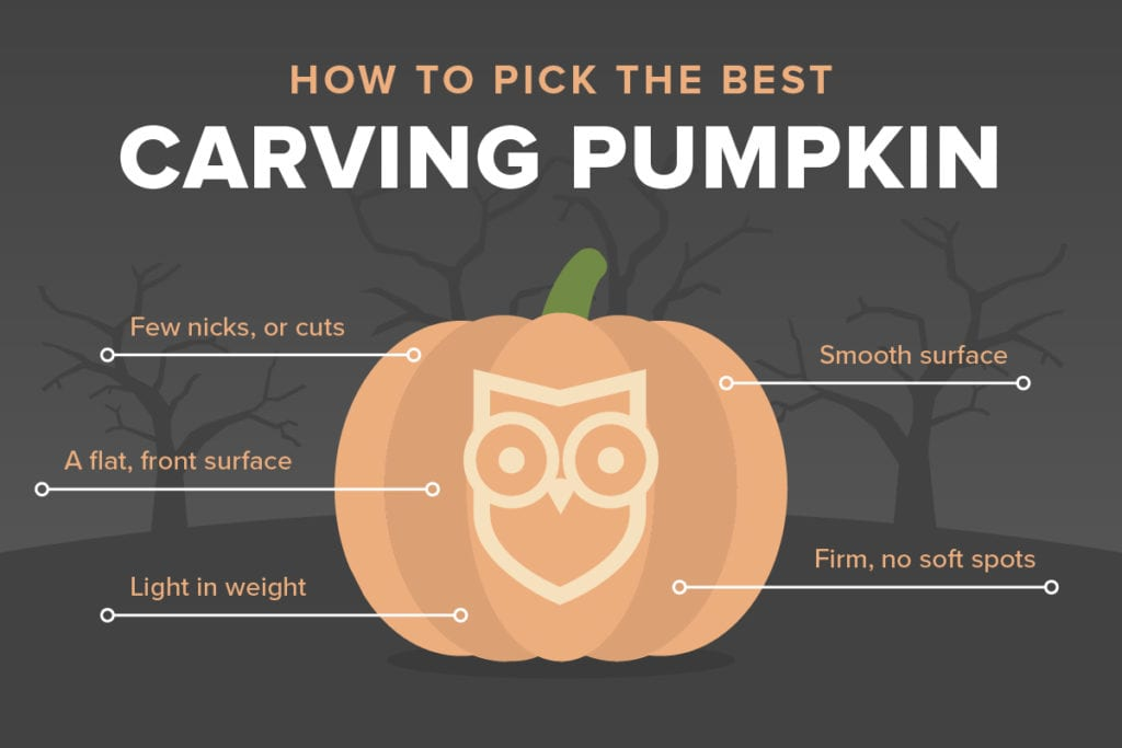 how-to-pick-carving-pumpkin